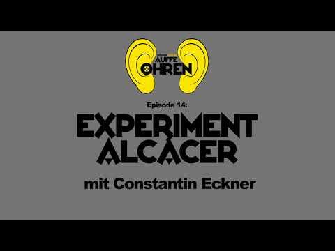 Auffen Punkt #14: Experiment Alcácer   BVB Podcast von schwatzgelb de