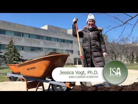 2018 ISA Award of Distinction | Jessica Vogt, Ph.D.