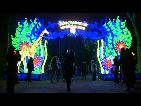 Nantes. Rêver à la nuit tombée au Jardin des plantes