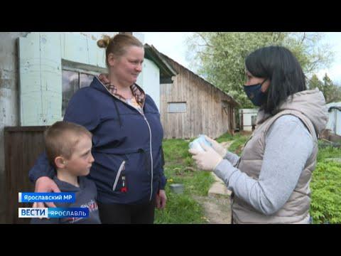 В Международный день семьи «Вести» заглянули в гости к многодетной маме из деревни Некрасово