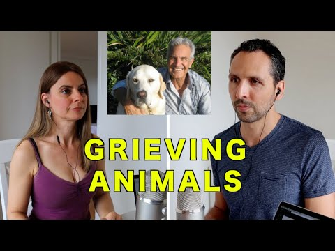 GRIEVING OUR COMPANION ANIMALS with New York Times Best Selling Author Jeffrey Masson