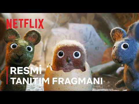 Robin Robin   Resmi Tanıtım Fragmanı   Netflix