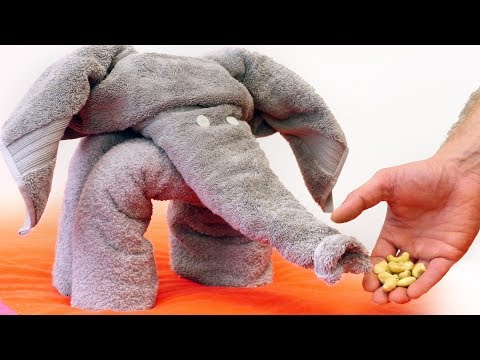 How to Make a Towel Elephant