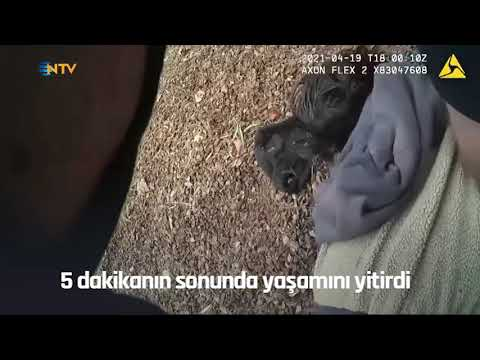 NTV | ABD'de yine polis şiddeti: Polisin 5 dakika boynuna bastırdığı genç öldü