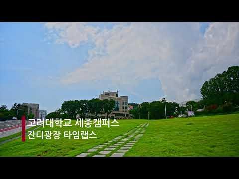 [고려대학교 세종캠퍼스] [4K] 고려대학교 세종캠퍼스 잔디광장 타임랩스