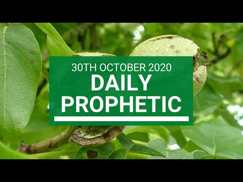 Daily Prophetic 30 October 2020 5 of 9 Daily Prophetic Word