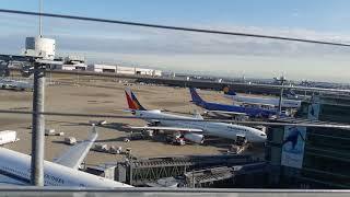 Haneda airport international terminal Tokyo in Japan