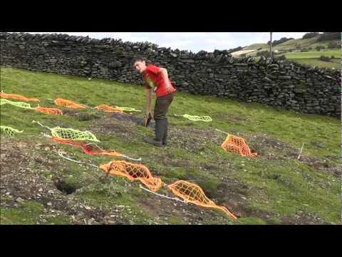Catching rabbits using ferrets, 27 in 4 hours. - UC0apFtCmXtC8BGKH_vpclCw