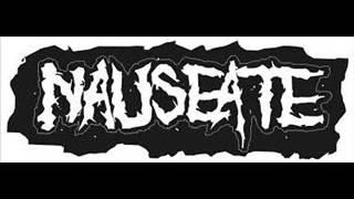 Nauseate - nauseate , Metal