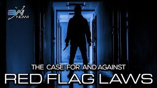 What if the 'Red Flag Law' Targets You: Who Decides to Take Away Your Guns?