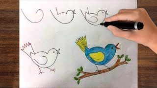 How To Draw And Coloring Talking Bird For Kids !  Bird Drawing Lesson Step by Step