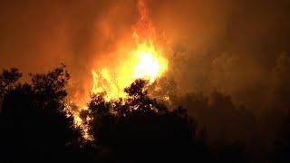 Les pompiers grecs luttent contre un violent incendie sur l'île d'Eubée | AFP Images
