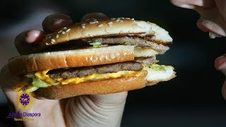 Study Finds Hamburger Meat Contains Rat & Human DNA