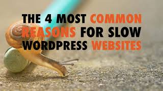 The 4 Most Common Reasons for Slow WordPress Websites - WP The Podcast EP 595