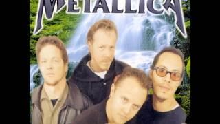 Acoustic Metal (1997)