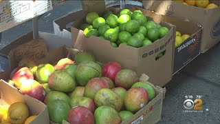 Pharmacy To Farm Program Looks To Help Low-Income Residents