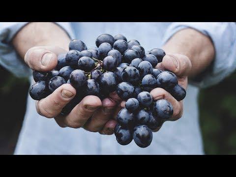 Organic Food: Rooted in Lies? - Professor Carolyn Roberts - UC1t6kKXoBvjdr8m9KJ2Fx7A