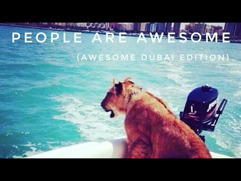 PEOPLE ARE AWSOME (AWESOME DUBAI WITH AWESOME PEOPLE) 2017 - UCv6lEceR40oiQKJQ1-rgPmw