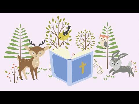 Gateway Kids Baby Bible Lesson