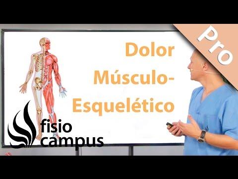 Cómo sospechar que un dolor músculo-esquelético es de origen visceral