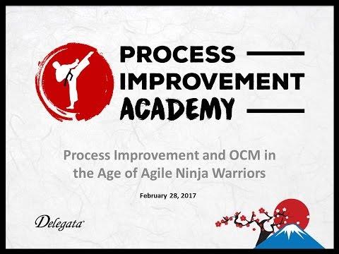 GTI2017 Sn4b: Process Improvement Academy - Delegata