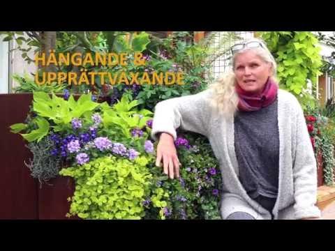 Blomlådetips från Mona och Ulf