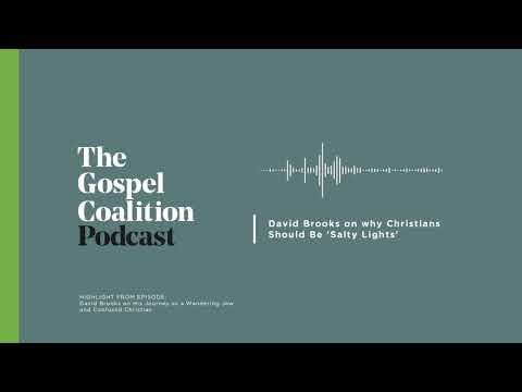 David Brooks on Christians as Salty Lights