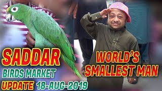 World's Smallest Man at Saddar Exotic Birds and animals Market Jamshed Asmi Informative Channel
