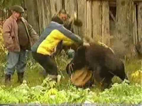 A women is feeding a bear until he wants her as his dinner