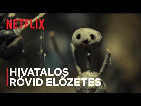 A gesztenyeember   Hivatalos rövid előzetes   Netflix