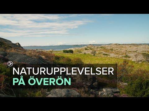 Upptäck Överön - en naturpärla vid nordre älvs inlopp