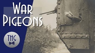 Nine Ounce Heroes: The Surprising Contributions of War Pigeons