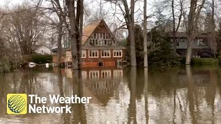 Jaw-dropping hovercraft tour of the flooding in this Montreal neighbourhood