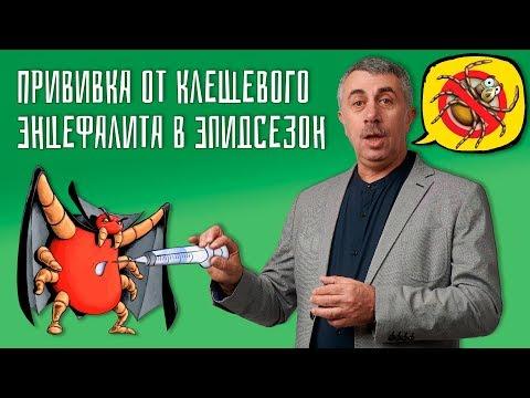 Прививка от клещевого энцефалита в эпидсезон — Доктор Комаровский