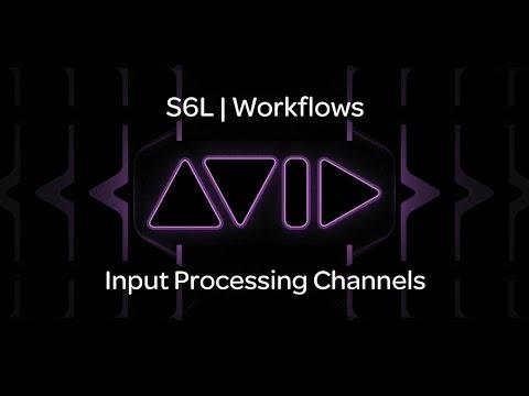 VENUE | S6L — Input Processing Channels