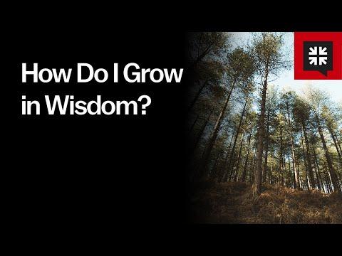 How Do I Grow in Wisdom? // Ask Pastor John