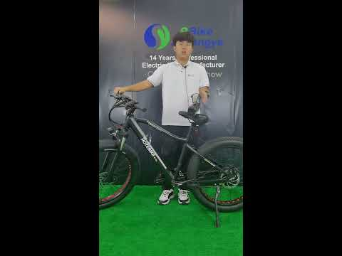 Shuangye hot sell 26''*4.0 fat tire electric bike A6AH26F