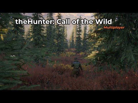 theHunter: Call of the Wild -- 06/02/2020