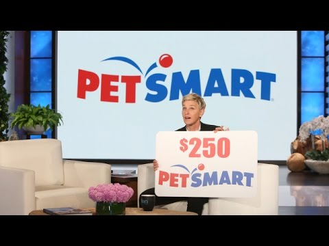 Announcing 'Ellen's Pet Dish'!