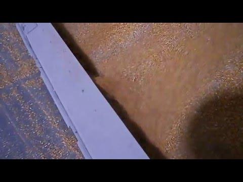 Clean Floor Grain Sweep