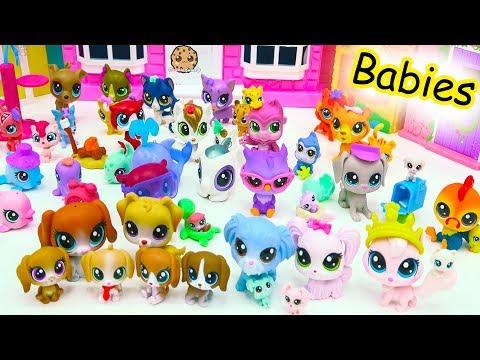 Littlest Pet Shop Dog, Cat, Animal Family Mom, Dad & Baby LPS Haul - Cookie Swirl C - UCelMeixAOTs2OQAAi9wU8-g