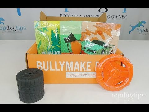 March 2020 Bullymake Box Unboxing