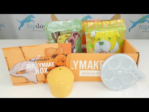 September 2020 Bullymake Box Unboxing