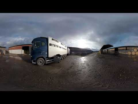 360-film Patrik Djurtransporter