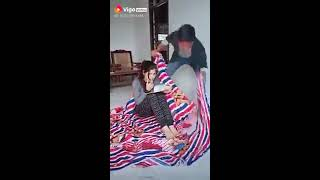 Try Not To Laugh - Funny Videos - Indian Vines 2019