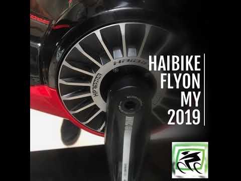 Haibike FLYON 10.0