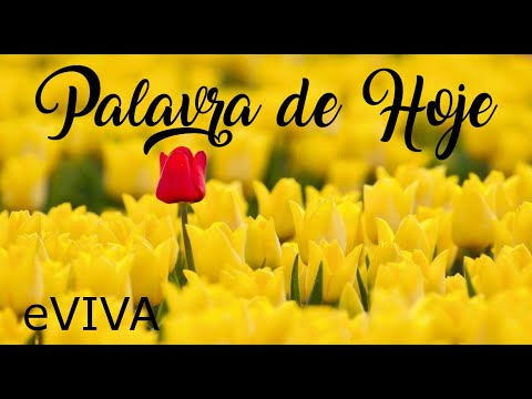 PALAVRA DE HOJE 02 DE JULHO 2020 eVIVA MENSAGEM MOTIVACIONAL PARA REFLEXÃO SALMO 5 BOM DIA MANHÃ!