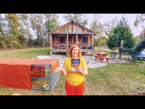 Why NOW is the Best Time To Start Homesteading