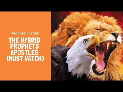 Prophetic Word - Hybrid Anointing Apostles & Prophets