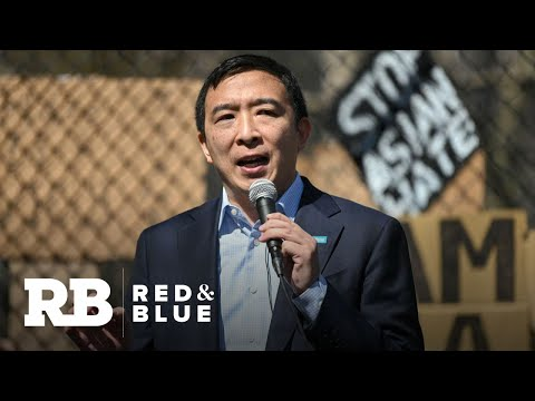 Andrew Yang leading polls in New York City mayor's race